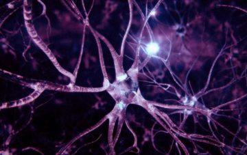 podem-nog-ukreplenie-nervnoj-sistemy