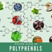 polifenoly